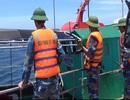 Truy tìm tàu lạ nghi đổ chất thải nguy hại xuống biển