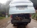 Bắt quả tang xe ôtô vận chuyển động vật trái phép