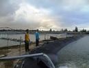 Các chủ hồ tôm mong nước biển an toàn để khôi phục sản xuất