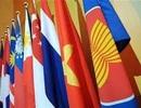 Các tổ chức nhân dân Việt Nam hướng tới Diễn đàn Nhân dân ASEAN 2015