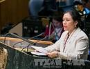 Việt Nam cam kết thực hiện nghiêm chỉnh Hiệp ước NPT