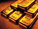 Lòng trung thực nhận được phần thưởng bằng… vàng