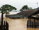 Nước dâng cao 2m, nhấn chìm nóc nhà dân
