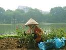 Trồng hàng nghìn chậu hoa bên hồ Hoàn Kiếm mừng Ngày Quốc khánh