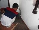 Hà Nội: Đào nền nhà khoan giếng vì mất nước kéo dài