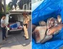 Hà Nội: Bắt giữ 25 thùng chân giò lợn bốc mùi