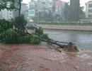 Ngày mai Hà Nội có mưa giông