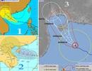 Vì sao bão số 7 suy yếu nhanh trước khi vào đất liền?