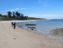 """Bộ NN&PTNT không đồng ý """"xén"""" hơn 1.000 ha khu bảo tồn biển Hòn Cau"""