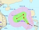 Bão Tokage vào Biển Đông, hướng đi dự báo gấp khúc phức tạp