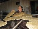 Làng bánh tráng tất bật vào vụ bánh lớn nhất năm