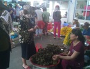 Bánh ú tro, trái cây đắt hàng nhờ Tết Đoan Ngọ