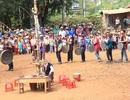 Tưng bừng Lễ hội Mừng lúa mới của người Xê đăng trên Tây Nguyên