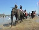 Bảo tồn hệ động vật đa dạng, các loại thú quý hiếm tại Đắk Lắk