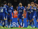 Leicester City công bố lợi nhuận kỷ lục
