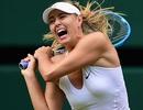 Thế giới quần vợt nói gì sau scandal doping của Sharapova?