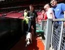 """Sự thật bất ngờ về """"vật thể lạ"""" ở sân Old Trafford"""