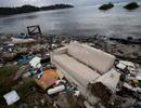Xác chết trôi dạt… ở địa điểm tổ chức Olympic 2016