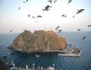 Nhật Bản chi gần 8 triệu USD cho đảo tranh chấp với Hàn Quốc