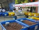 Chiêm ngưỡng những sản phẩm khoa học tiêu biểu tỉnh Thừa Thiên Huế