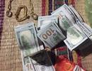 Nhờ trông giữ nhà, cháu gái nghi trộm vàng, đô la của chú