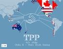 Vào TPP: Điện, xăng dầu, vận tải...chịu áp lực cải cách mạnh nhất