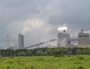 """Bộ Công Thương """"thúc"""" Hải quan cho Formosa được trực tiếp nhập than"""