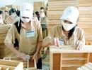 """Xuất khẩu của ngành gỗ """"vượt mặt"""" dầu thô hơn 3,3 tỷ USD"""