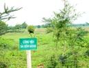 """""""Siêu dự án"""" công viên lớn nhất Việt Nam """"đắp chiếu""""... suốt 11 năm!"""