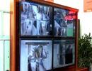 Lắp camera giám sát cán bộ tiếp dân