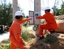 Đường dây vượt biển lớn nhất cả nước mang điện đến xã đảo Lại Sơn