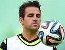 Dính chấn thương, Fabregas phải về lại Chelsea