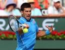 Djokovic bị vắt sức, Bourchard thành khán giả