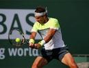Djokovic, Nadal, Federer cùng vào tứ kết