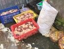 Cần Thơ: Phát hiện và thu giữ 400 kg thịt gà tẩm ướp hàn the