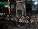 Hỏa hoạn tại chung cư, ai bồi thường cho dân?