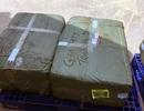 Hà Nội: Phát hiện vụ vận chuyển hơn 300kg ngà voi qua đường hàng không