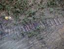 Dựng trại dã chiến, bảo vệ... 4 bao tải lựu đạn dưới sông