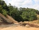 Đường nghìn tỷ xuyên rừng: Đường đi tới đâu, rừng mất tới đó!