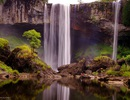 Làm thủy điện trong khu bảo tồn: Chỉ mất 16ha rừng?
