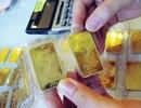 Tiếp tục đấu thầu tăng cung cho thị trường vàng