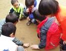 Thanh Hóa: Gần 18.000 học sinh vùng đặc biệt khó khăn được hỗ trợ gạo