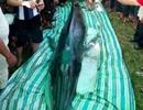 Xác cá voi nặng hơn nửa tấn dạt vào bờ biển