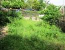 Dự án bán đất của dân: Chính quyền TP Thanh Hoá chọn căn cứ bất lợi cho dân