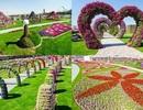 Lạc bước vào vườn hoa đẹp nhất thế giới ở Dubai