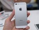 Việt Nam bất ngờ trở thành thị trường tăng trưởng mạnh nhất của Apple