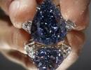 Chiêm ngưỡng viên kim cương xanh lớn nhất thế giới giá 530 tỷ đồng