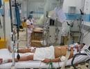TPHCM: Bệnh sốt xuất huyết gia tăng khó lường