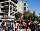 Du học New Zealand – nâng cao chất lượng học tập
