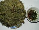 Mùa đông lên Sông Mã thưởng thức món rêu nướng